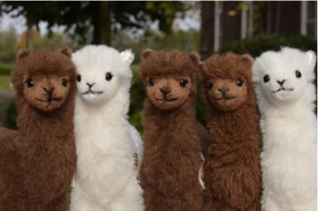 Kösener Alpaka Stofftier